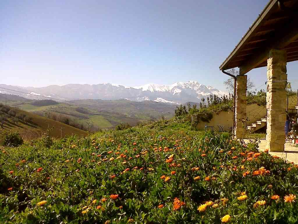 Country Houses Country Houses for sale Penne (PE), Casa Cignale - Penne - EUR 0 50