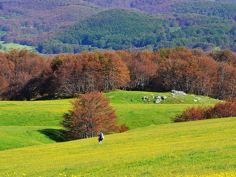 <strong>Abruzzo la regione più verde d'Europa</strong>