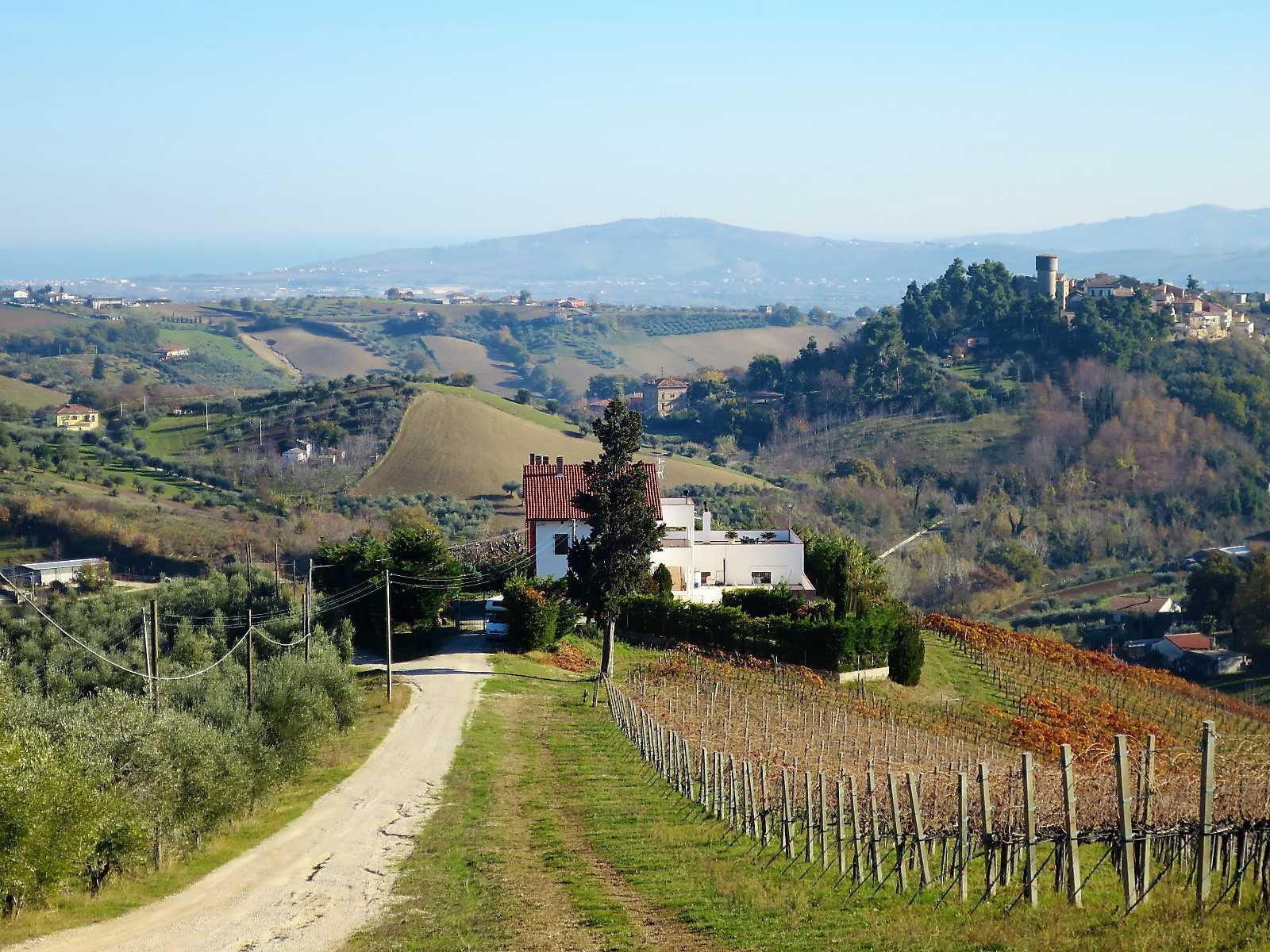 Villa Villa in vendita Notaresco (TE), Villa Vigneto - Notaresco - EUR 382.044 280