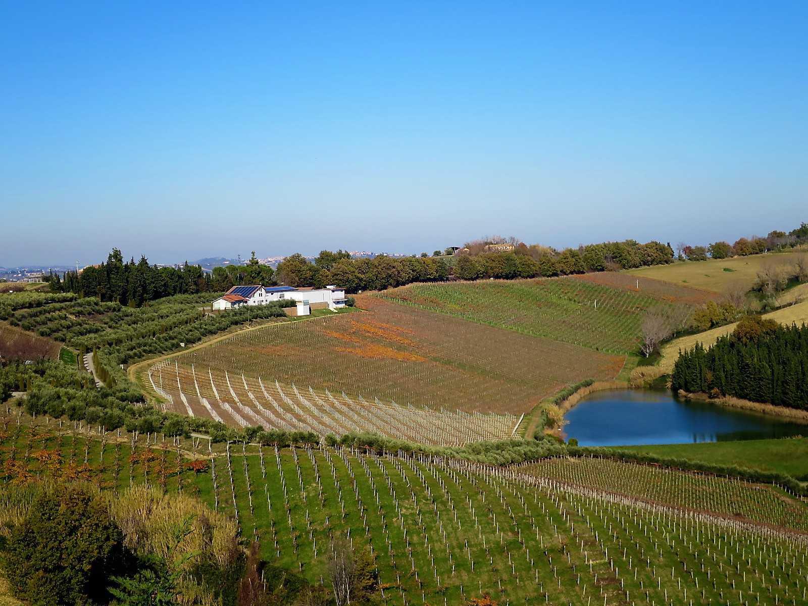 Villa Villa in vendita Notaresco (TE), Villa Vigneto - Notaresco - EUR 382.044 460