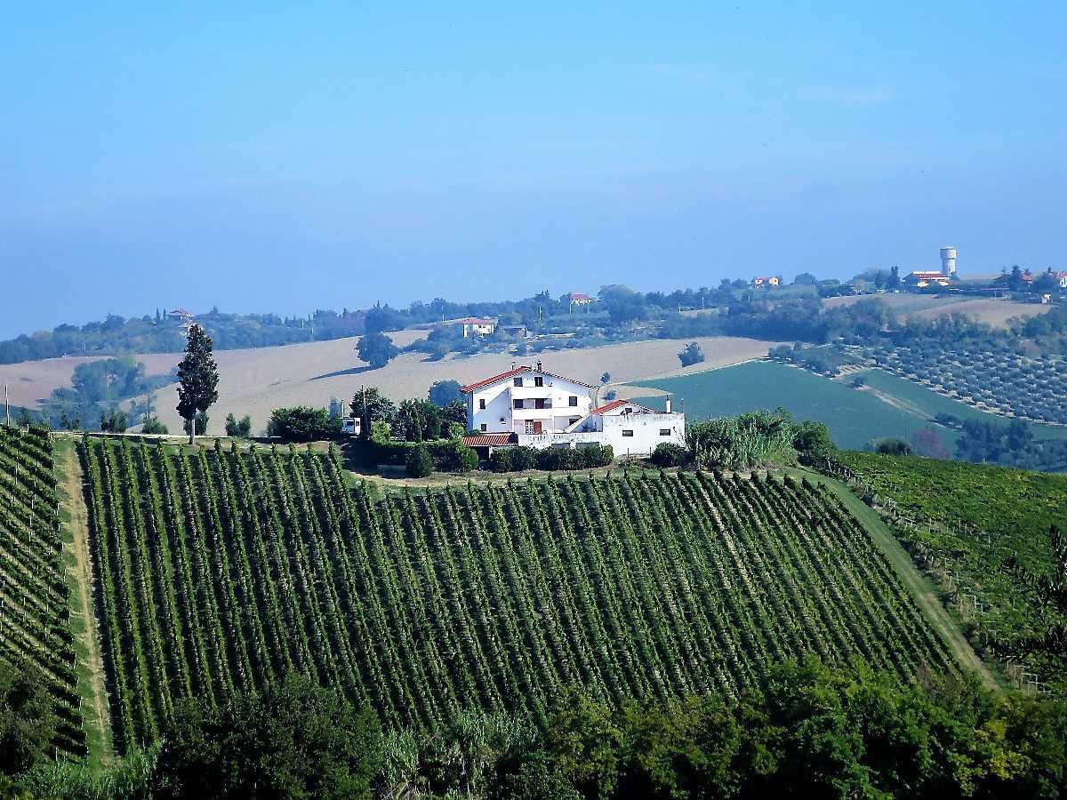Villa Villa in vendita Notaresco (TE), Villa Vigneto - Notaresco - EUR 382.044 470