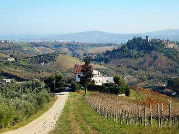 Villa Villa Vigneto - Notaresco - EUR 373.483