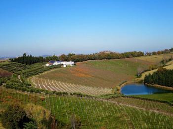 Villa Villa in vendita Notaresco (TE), Villa Vigneto - Notaresco - EUR 382.044 460 small
