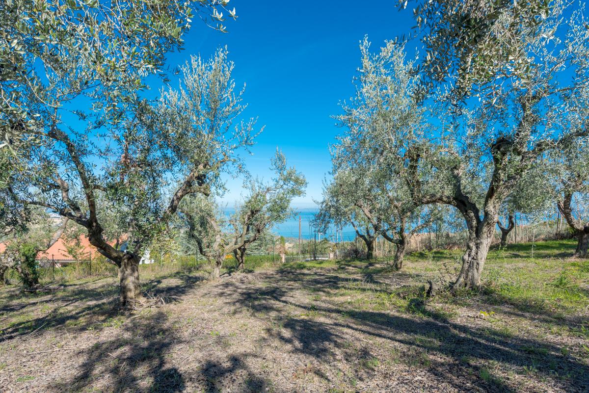 Villa Villa for sale Roseto degli Abruzzi (TE), Villa Pagano - Roseto degli Abruzzi - EUR 403.084 580