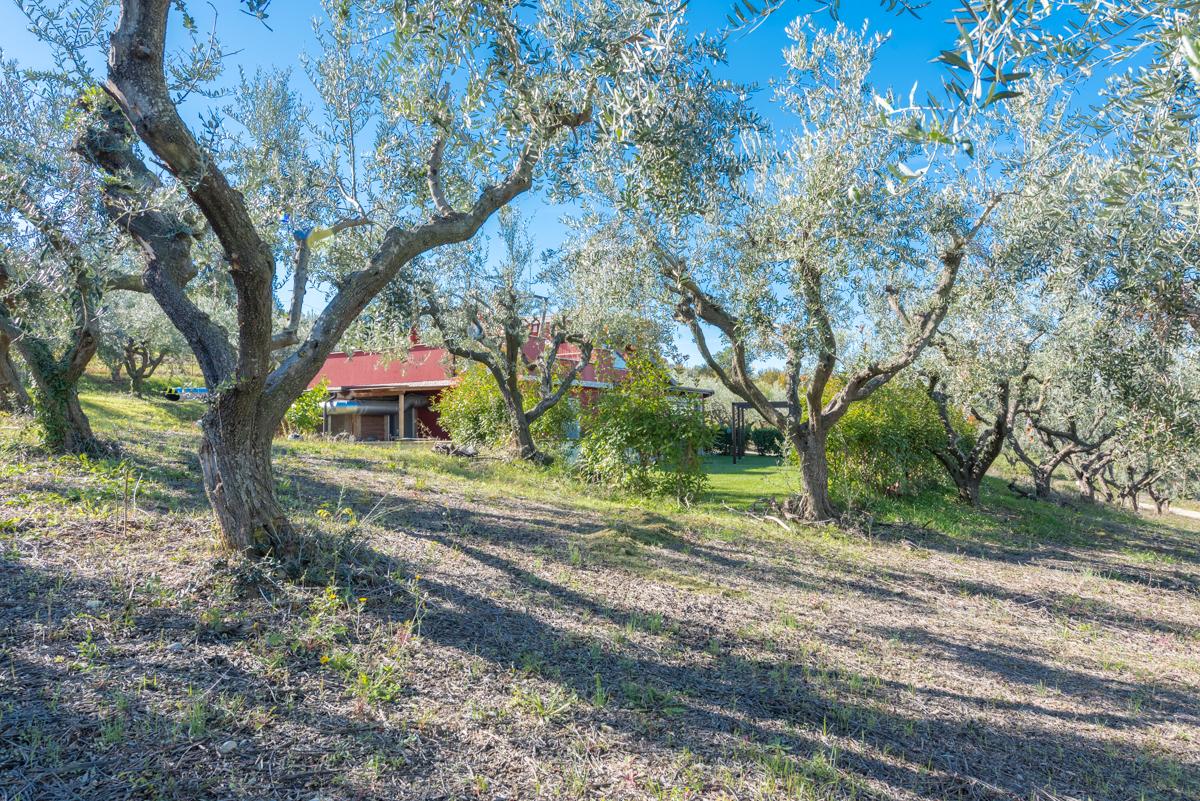 Villa Villa for sale Roseto degli Abruzzi (TE), Villa Pagano - Roseto degli Abruzzi - EUR 403.084 590