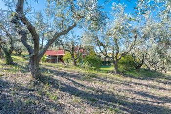 Villa Villa for sale Roseto degli Abruzzi (TE), Villa Pagano - Roseto degli Abruzzi - EUR 403.084 590 small