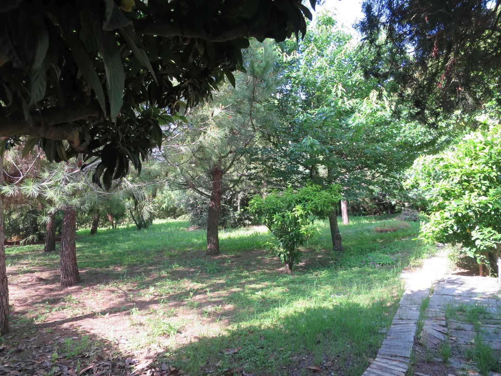 Villa Villa for sale Roseto degli Abruzzi (TE), Villa del Marinaio - Roseto degli Abruzzi - EUR 385.559 700