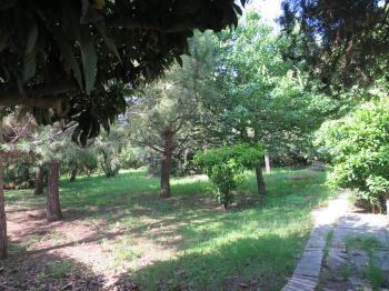 Villa Villa for sale Roseto degli Abruzzi (TE), Villa del Marinaio - Roseto degli Abruzzi - EUR 385.559 700 small