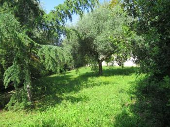 Villa Villa for sale Roseto degli Abruzzi (TE), Villa del Marinaio - Roseto degli Abruzzi - EUR 385.559 720 small