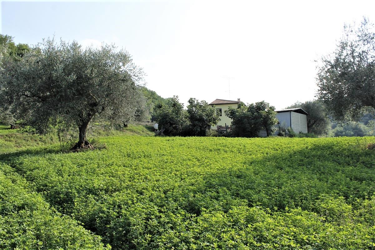 Country Houses Country Houses for sale Castiglione Messer Raimondo (TE), Yellow House - Castiglione Messer Raimondo - EUR 129.011 590