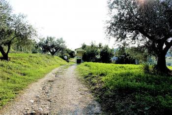 Country Houses Country Houses for sale Castiglione Messer Raimondo (TE), Yellow House - Castiglione Messer Raimondo - EUR 129.011 420 small