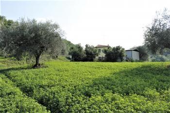 Country Houses Country Houses for sale Castiglione Messer Raimondo (TE), Yellow House - Castiglione Messer Raimondo - EUR 129.011 590 small