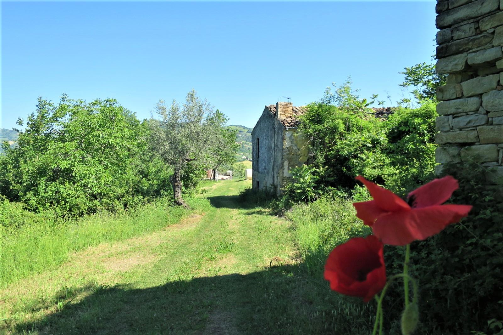 Country Houses Country Houses for sale Castiglione Messer Raimondo (TE), Casa Paradiso - Castiglione Messer Raimondo - EUR 181.096 470