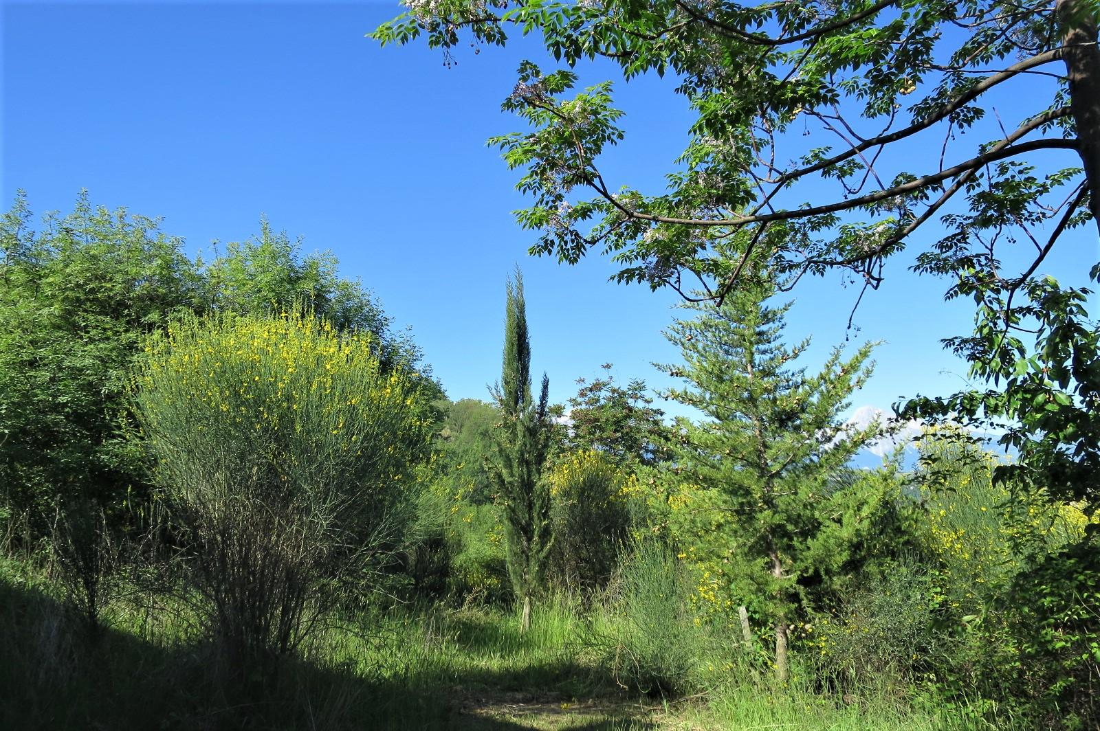 Country Houses Country Houses for sale Castiglione Messer Raimondo (TE), Casa Paradiso - Castiglione Messer Raimondo - EUR 181.096 580