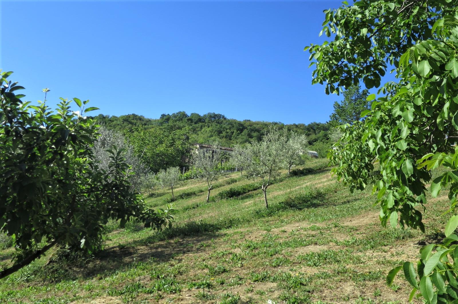 Country Houses Country Houses for sale Castiglione Messer Raimondo (TE), Casa Paradiso - Castiglione Messer Raimondo - EUR 181.096 620