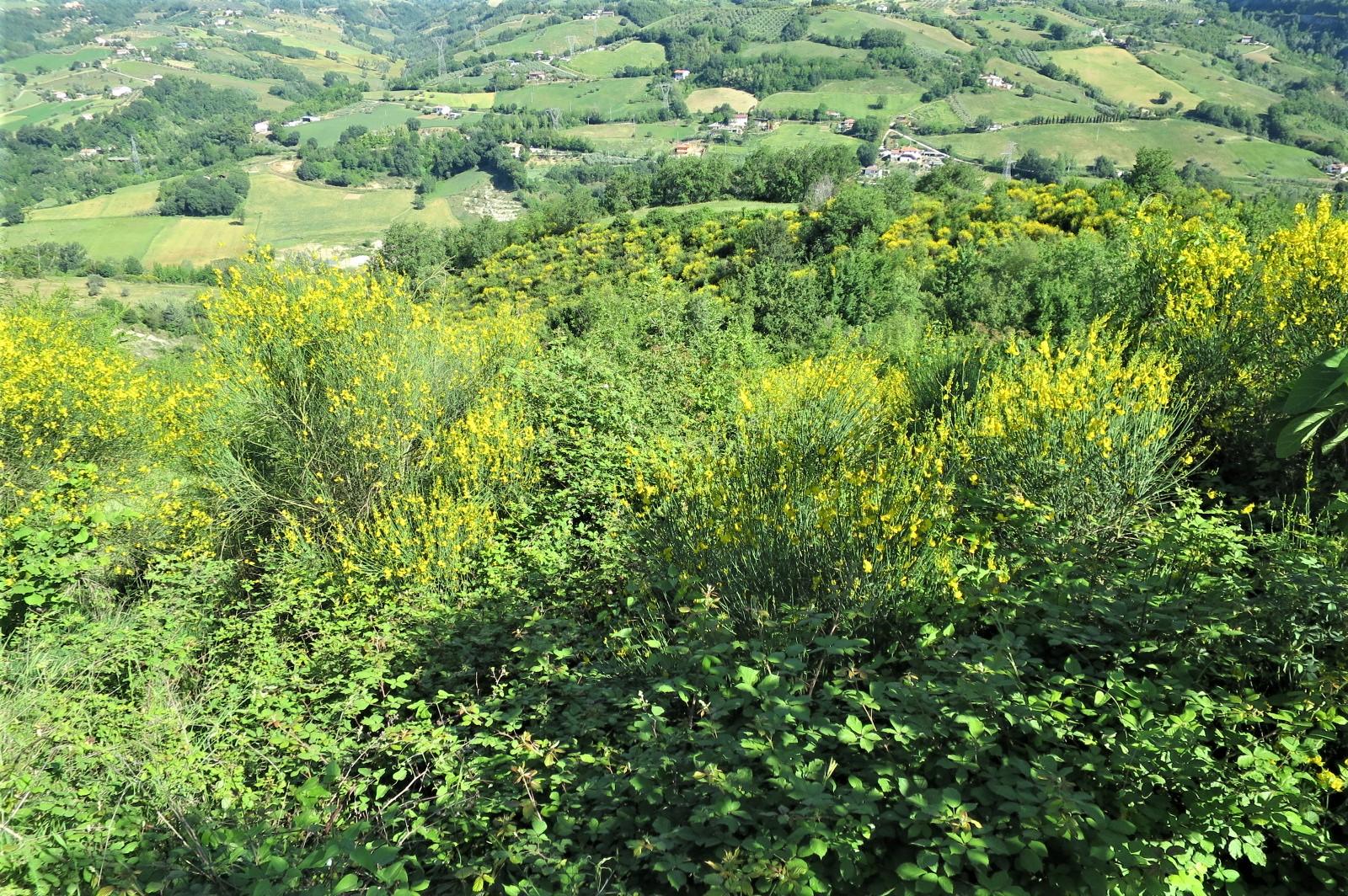 Country Houses Country Houses for sale Castiglione Messer Raimondo (TE), Casa Paradiso - Castiglione Messer Raimondo - EUR 181.096 660