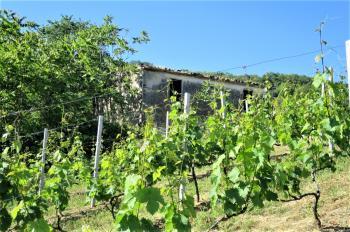 Country Houses Country Houses for sale Castiglione Messer Raimondo (TE), Casa Paradiso - Castiglione Messer Raimondo - EUR 181.096 440 small