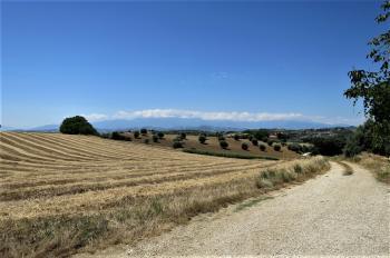 Country Houses Country Houses for sale Morro D'Oro (TE), Casa del Moro - Morro D'Oro - EUR 327.141 690 small