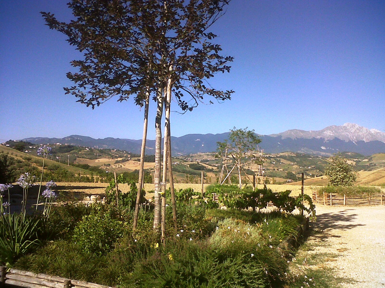 Country Houses Country Houses for sale Penne (PE), Casa Cignale - Penne - EUR 0 150